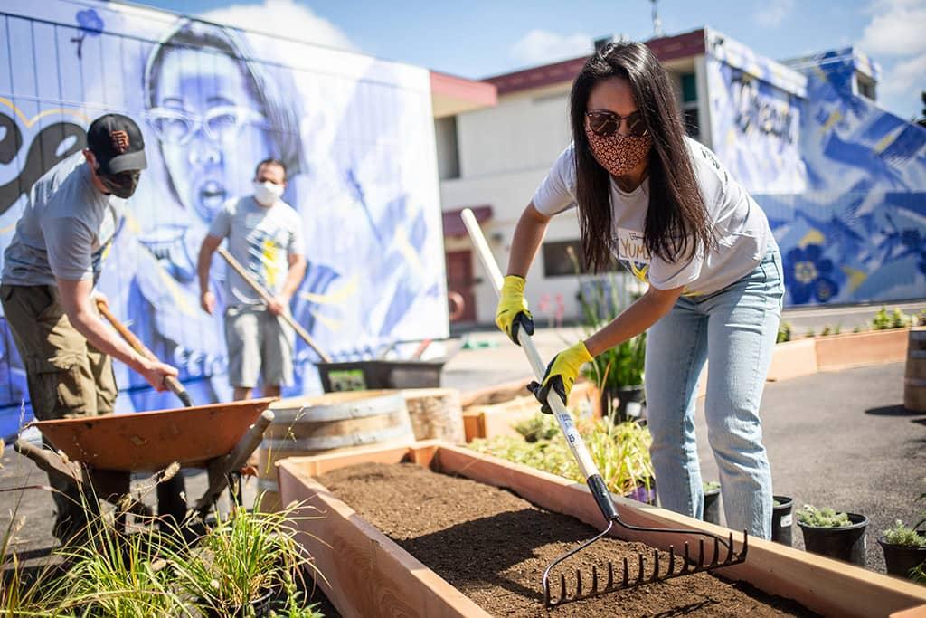 Volunteer flattens dirt in flower bed